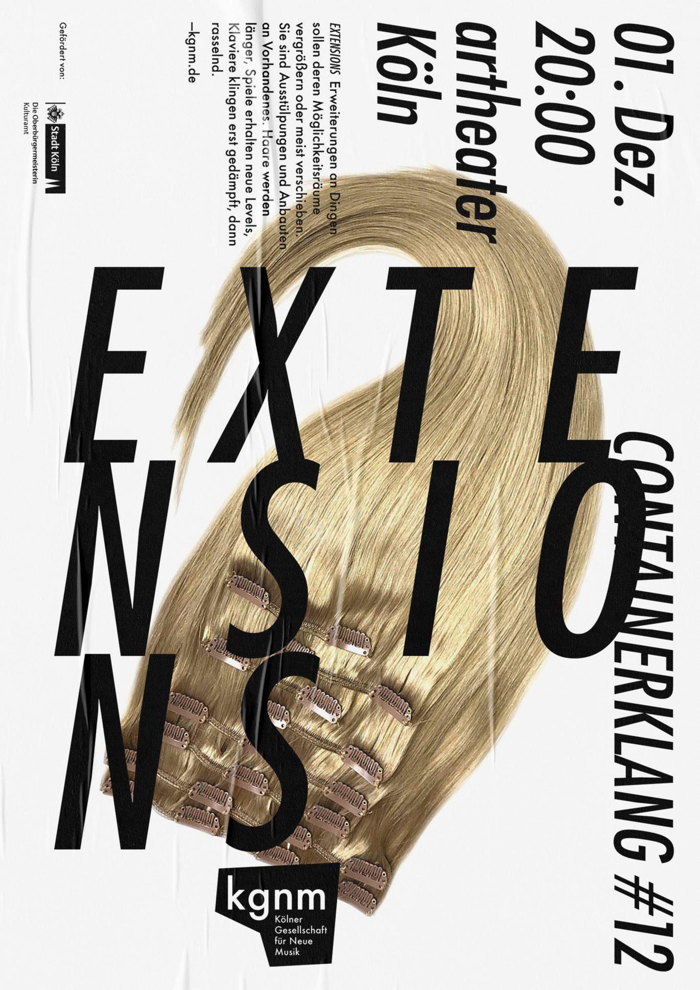 Plakat Design | öffentlicher Raum | Musik Konzert | Redesign
